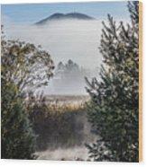 Burke Above The Fog Wood Print