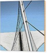 Burke Brise Soleil  2 Wood Print