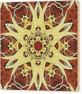 Burl And Brass Kaliedoscope Wood Print
