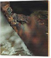 Burn The Sea Wood Print