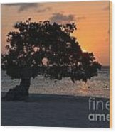 Burning Beach Sunset Wood Print