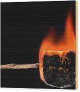 Burning Marshmallow On A Stick Wood Print