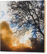 Burning Olive Tree Cuttings Wood Print