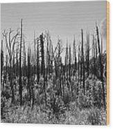 Burnt Moonscape Wood Print