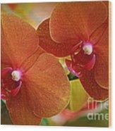 Burnt Orange Orchids Wood Print