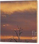 Burnt Orange Sunset Wood Print