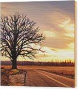 Burr Oak Silhouette Wood Print