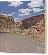 Burr Trail Road Through Long Canyon Wood Print