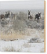 Burros In The Snow Wood Print