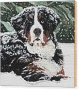 Burrr Wood Print