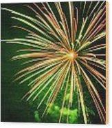 4th Of July Fireworks 6 Wood Print by Howard Tenke