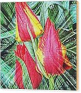 Burst Of Color Wood Print by Cathie Tyler