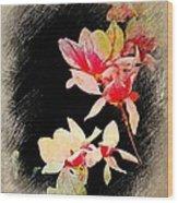 Bursting Magnolias Wood Print