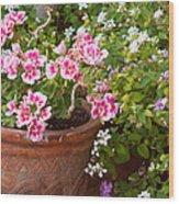 Bursting With Blooms Wood Print