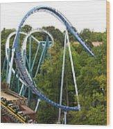 Busch Gardens - 12121 Wood Print