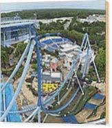 Busch Gardens - 121223 Wood Print by DC Photographer