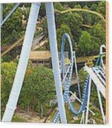 Busch Gardens - 121226 Wood Print