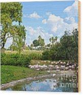 Busch Gardens Savannah Wood Print