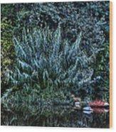 Bush Reflection Wood Print