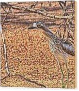Bush Stone Curlew Wood Print