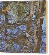 Reflection In Bushkill Falls  Wood Print