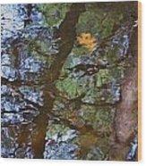 Second  Reflection In Bushkill Falls  Wood Print