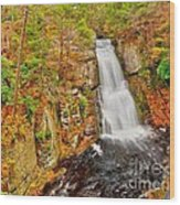 Bushkill Falls Pa Wood Print