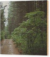 Bushroad Wood Print