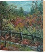Bussey Hill View Wood Print