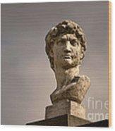 Bust Of Apollo Wood Print