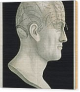 Bust Of Johan Spurzsheim Wood Print