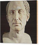 Bust Of Julius Caesar Wood Print