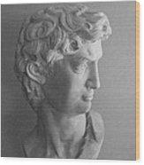 Bust Of Michaelangelo's David Wood Print
