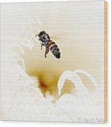 Busy Bee  Wood Print by Jacob Sela