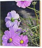Busy Bees Wood Print by Susan Leggett