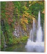 Butchart Waterfall And Fountain-- Wood Print