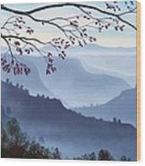 Butte Creek Canyon Mural Wood Print