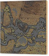 Butterflies 1 Wood Print