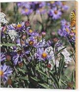 Butterflies And Wildflowers Wood Print