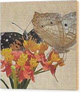 Butterflies Snd Flowers Wood Print