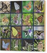 Butterflies Squares Collage Wood Print