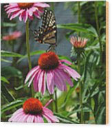 Butterfly 1 2013 Wood Print