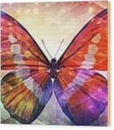 Butterfly 14-1 Wood Print