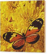 Butterfly Abstract Wood Print by Garry Gay
