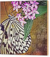 Butterfly Art - Hanging On - By Sharon Cummings Wood Print by Sharon Cummings