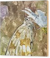 Butterfly Art Print 3 Wood Print