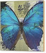 Butterfly Art - S01bfr02 Wood Print by Variance Collections
