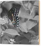 Butterfly Art Wings Together Wood Print