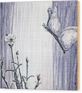 Butterfly At The Veil Wood Print