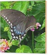 Butterfly Ballot Wood Print